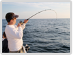 Fish Rod and Light Tackle Fishing